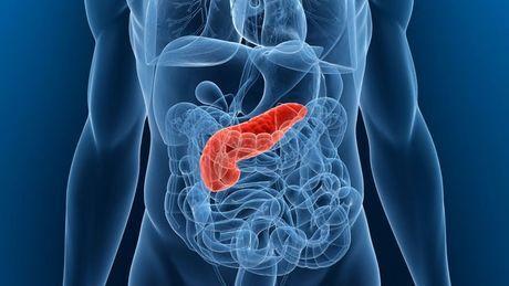 Was ist eine Bauchspeicheldrüsenentzündung: akute und chronische Pankreatitis, Ursachen, Symptome, Therapie