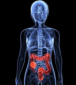 Darmkrebs: wie kann man ihn erkennen? Symptome, Anzeichen, Heilungschancen, Alter und Behandlung