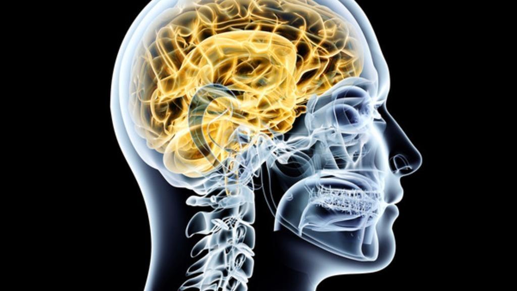 Parkinson: Symptome, Demenz, Ursachen, Verlauf, Therapie und Lebenserwartung