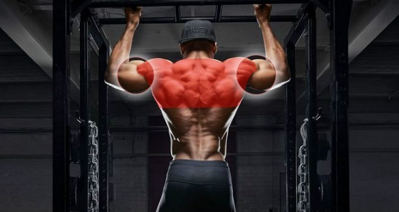 FitnessForFreaks cover image
