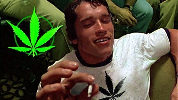 Курит ли эминем марихуану конопля jamaican