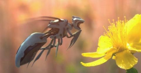 US-Konzern Walmart geht den Bienen mit einer umstrittenen Technologie an den Kragen