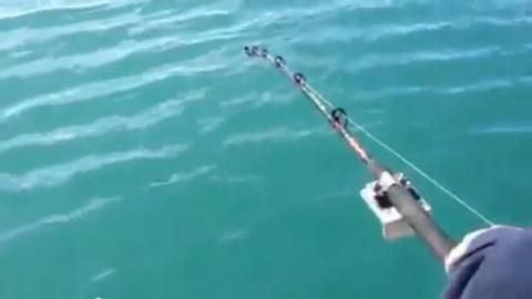Angler gelingt außergewöhnlicher Fang