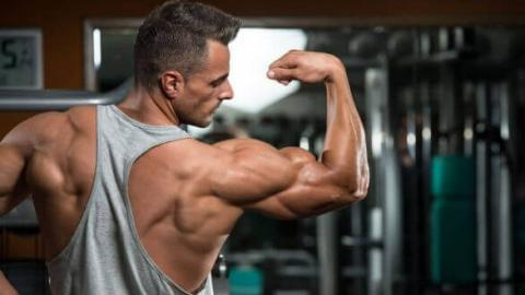 Nur mit dem eigenen Körpergewicht: Diese Übung fordert euren Bizeps maximal heraus