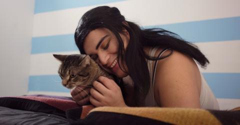Katzenallergie: Forscher finden wahrscheinlich eine Lösung für Betroffene