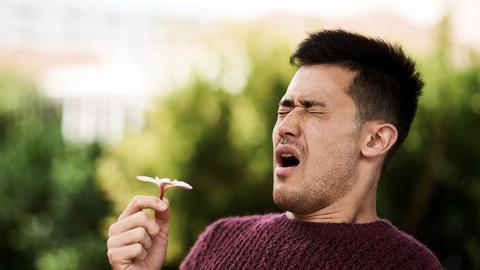 Mann leidet jahrelang an Heuschnupfen: Dann heilt er sich mit schmerzlichen Methode