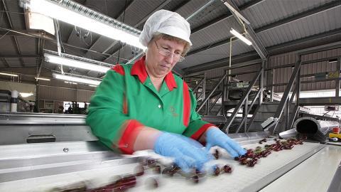 Selbst in kleinsten Mengen: Industriell verarbeitetes Lebensmittel fördert Sterberisiko