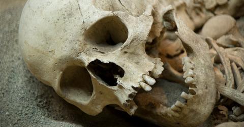 Entsetzliches Geheimnis unserer Vorfahren aufgedeckt