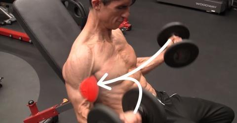 Wendet diese Technik beim Workout an und trainiert euch so einen größeren Bizeps an!