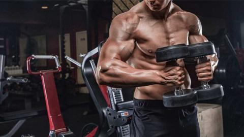 Hantel-Übungen: So stärkt ihr eure Brustmuskeln zielgerichtet