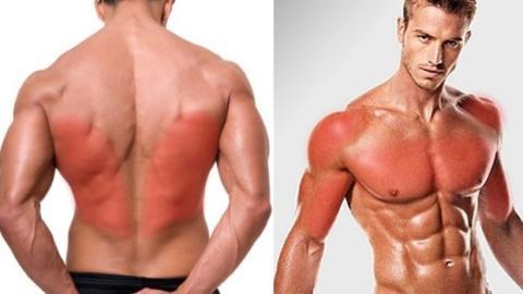 Oberkörper-Training: Alle Muskeln in einer einzigen Session