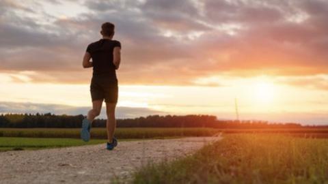 Studie gibt endlich Aufschluss: Ist es wirklich effizient, morgens zu trainieren?