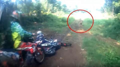 Sie sind unterwegs mit ihren Motorrädern. Doch plötzlich erscheint dieses merkwürdige Etwas!