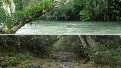 Ein ganzer Fluss vertrocknet in Mexiko innerhalb von nur zwei Tagen
