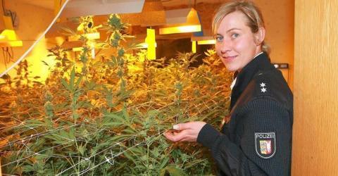 Polizei sorgt mit Cannabis-Forderung für große Aufregung