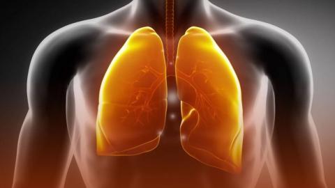 Rauchen: Mit diesen Nahrungsmitteln reinigst du deine Lunge von Teer und Nikotin