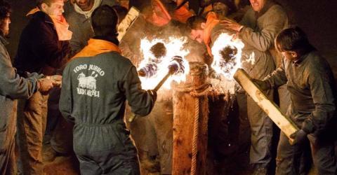 Grausames Ritual mit Stieren: Tierschützer prangern es seit Jahren an!