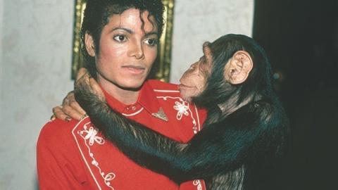Michael Jackson: So traurig ist das Schicksal seines Schimpansen Bubbles