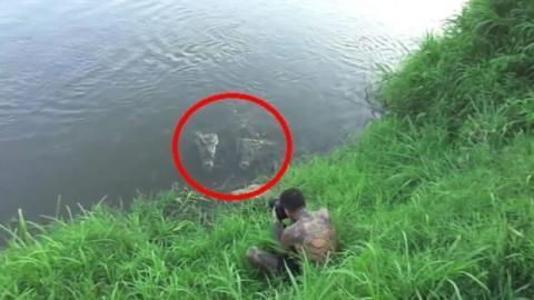 Dieser Fotograf wird von einem Krokodil auf Costa Rica angegriffen