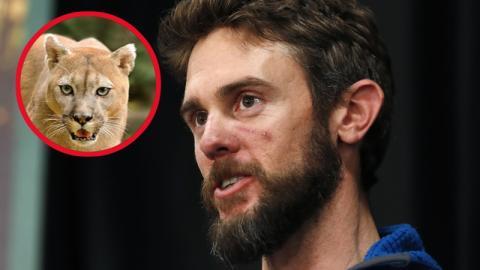 Er überlebt Puma-Attacke mithilfe dieser Kampftechnik