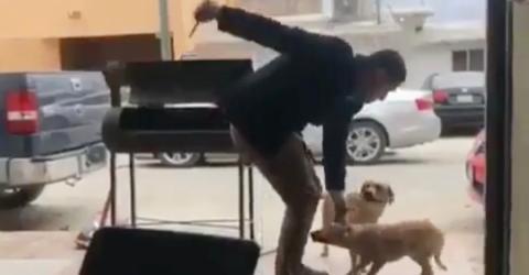 Überwachungskamera: Er lockt den Hund zu sich, dann zückt er plötzlich ein Messer