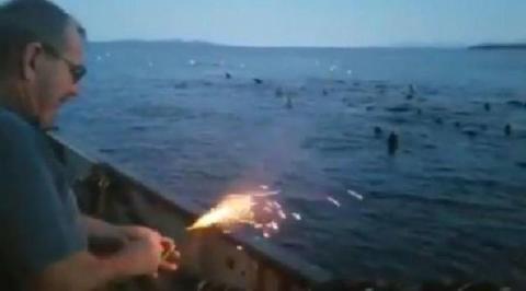 Fischer wirft Sprengstoff auf Tiere ins Meer, die Folgen sind unabsehbar!