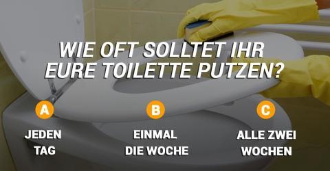 so h ufig solltet ihr die toilette putzen. Black Bedroom Furniture Sets. Home Design Ideas