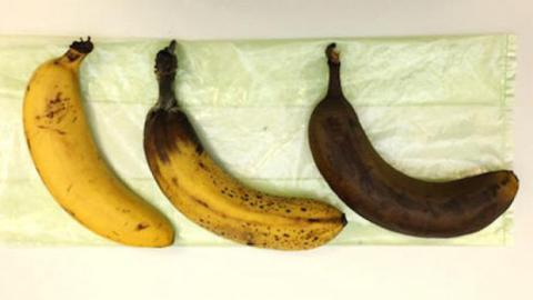 Tipps und Tricks - Episode 5: Wie lagert man Bananen, ohne dass die Schale schwarz wird?