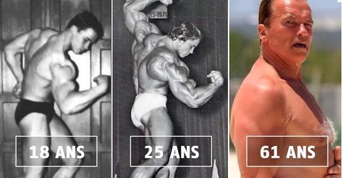 Arnold Schwarzenegger: Seine erstaunliche körperliche Entwicklung vom 17. Lebensjahr bis heute