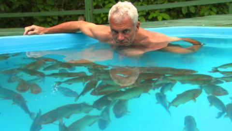 Mann setzt sich in einen Pool voller Piranhas