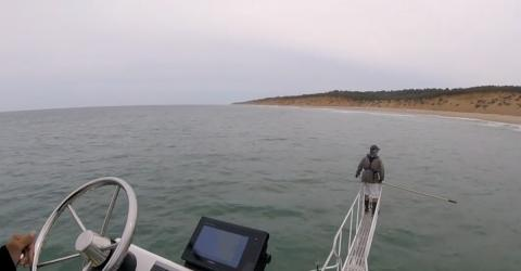 Forscher untersucht Wasser, als plötzlich ein Ungeheuer aus dem Meer angreift