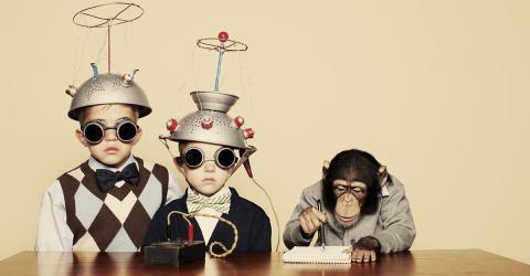 IQ-Test: Nur drei Fragen zeigen, ob du wirklich intelligent bist