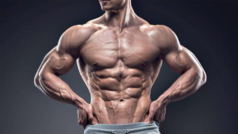 Diese vier Körperstellen machen einen gut gebauten Körper aus