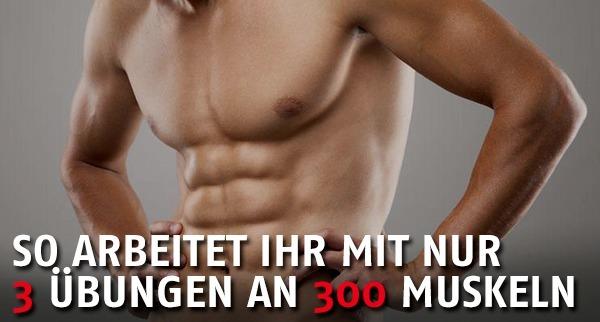 3 Übungen 300 Muskeln