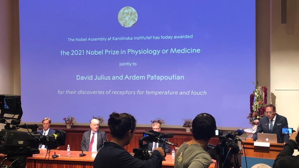 Medizin-Nobelpreis: Für diese bahnbrechenden Entdeckungen wurden die Forscher ausgezeichnet