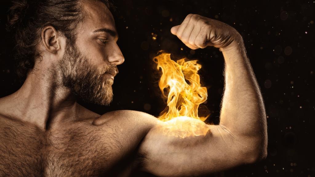 der stärkste muskel im körper