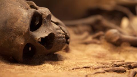 Genom-Analyse eines 11.500 Jahre alten Mädchens gibt Aufschluss über erste amerikanische Vorfahren