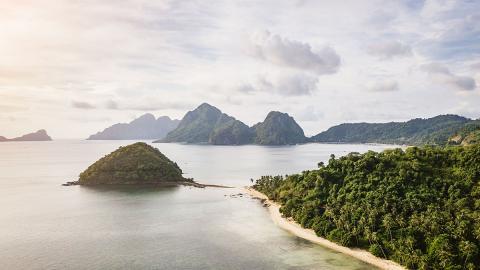 Naturspektakel auf den Philippinen: Tausende Quallen nehmen Strand in Beschlag