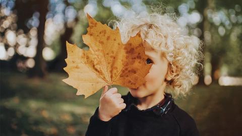 Studie bestätigt: September-Kinder sind intelligenter als andere