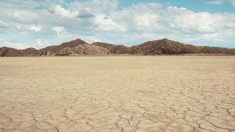 Extrem trockene Wüste: Hier bringt der Regen den Tod