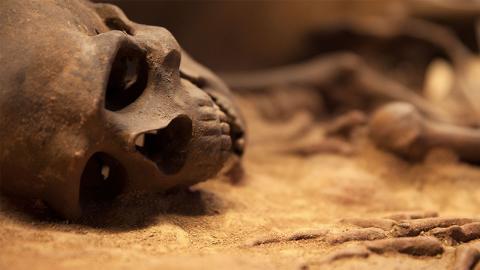 11.500 Jahre altes Mädchen gibt Aufschluss über erste amerikanische Vorfahren