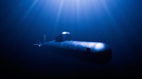 In 850 Metern Tiefe: Forscher stoßen auf noch nie gesichtete Kreatur