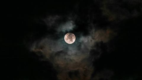 Dracula: Vampir oder blutrünstiger Herrscher?