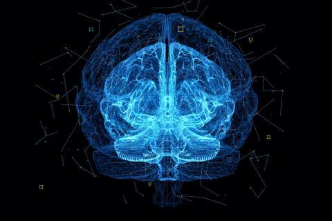 Gehirnkapazität: So viel Prozent unseres Gehirns nutzen wir wirklich