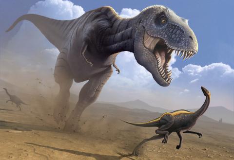 Dinosaurier: Analyse von T-Rex-Kieferknochen enthüllt seine Fressgewohnheiten