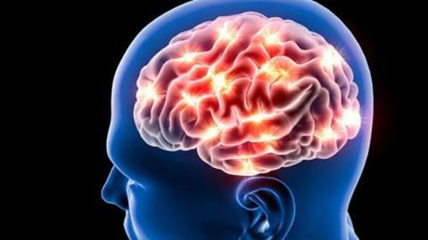 Gehirnforschung: Das Altern wirkt sich ganz anders auf das Gehirn aus als angenommen