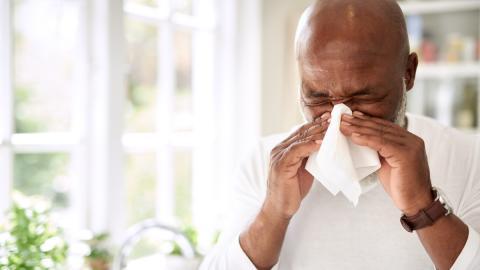 Pollenallergie: Diese Alkohole machen alles noch schlimmer