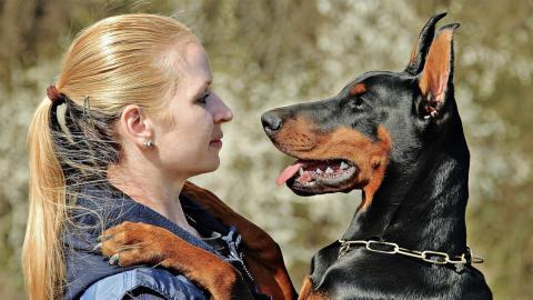 Nach dem Urlaub umarmt Frau ihren Hund mit schrecklichen Folgen