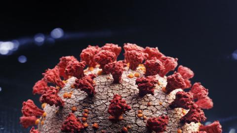 Coronavirus: An diesem Tag erreicht die 2. Welle ihren Höhepunkt