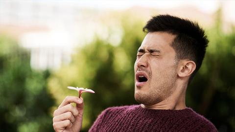 Mann leidet jahrelang an Heuschnupfen: Dann heilt er sich auf schmerzliche Weise selbst